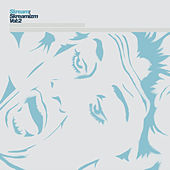 Skreamizm Vol. 2 de Skream