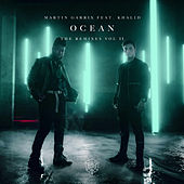 Ocean (Remixes Vol. 2) by Martin Garrix