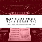 Magnificent Voices from a Distant Time by Various Artists