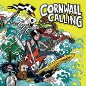 Cornwall Calling de Various Artists