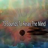 75 Sounds To Relax The Mind de Massage Tribe