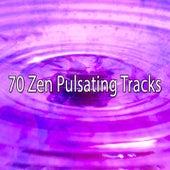 70 Zen Pulsating Tracks von Massage Therapy Music