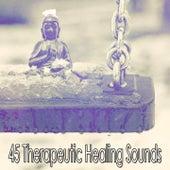 45 Therapeutic Healing Sounds de Meditación Música Ambiente