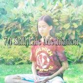 74 Still Life Meditation von Massage Therapy Music