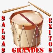 Salsas Grandes Éxitos de Various Artists