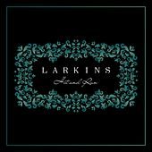 Hit and Run de The Larkins