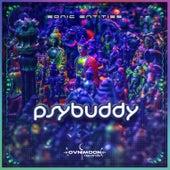 Sonic Entities by Psybuddy