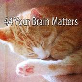 44 Your Brain Matters de Best Relaxing SPA Music