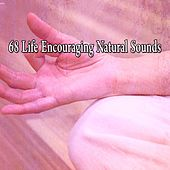 68 Life Encouraging Natural Sounds by Yoga Music