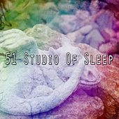 51 Studio Of Sleep by Ocean Sounds Collection (1)