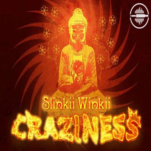 Craziness - Single by Slinkii Winkii