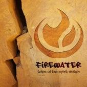 Tales of the Spiritwalker von Firewater