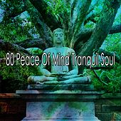 80 Peace Of Mind Tranquil Soul by Classical Study Music (1)