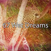 67 Wet Dreams by Sounds Of Nature