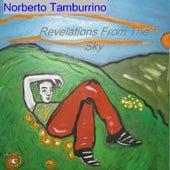 Revelations from the Sky by Norberto Tamburrino