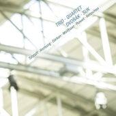 Dvorak & Suk: Trio & Quartet by Various Artists