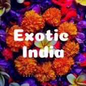 Exotic India de Various Artists