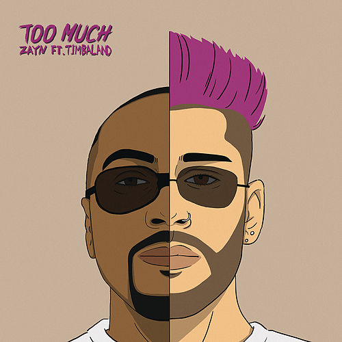 Too Much (feat. Timbaland) von ZAYN