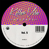 Vibes Vol. 5 by Various Artists