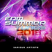 EDM Summer Tunes 2018 by Various Artists