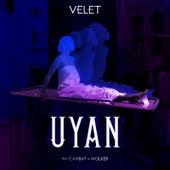 Uyan by Velet