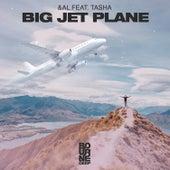 Big Jet Plane de Andal