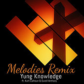Melodies (Remix) by Yung Knowledge