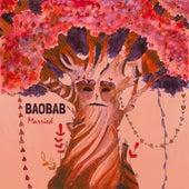 Baobab Married de Paul Marx