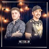 Acústico (Acústico) de Neto e JR