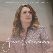 Minhas Fontes Estão em Ti de Jane Guimarães