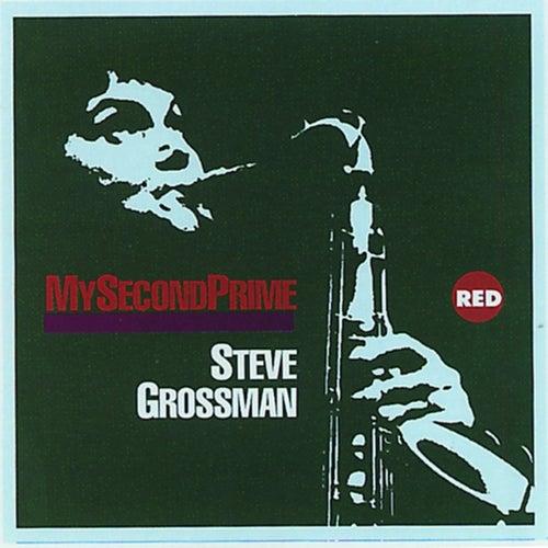 My Second Prime by Steve Grossman
