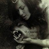 Run Wolves Run by Sean Hayes
