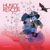 Diamonds in the Sky de Husky Rescue