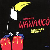 Lagrimas Negras by Los Wawancó