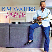 What I Like by Kim Waters