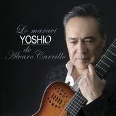 Lo Maravi Yoshio de Alvaro Carrillo by Yoshio
