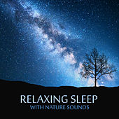 Relaxing Sleep with Nature Sounds de Nature Sound Collection