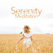 Serenity Meditation by Japanese Relaxation and Meditation (1)