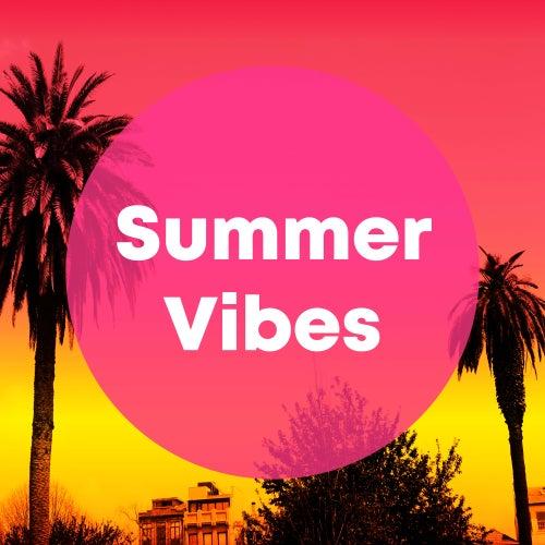 Summer Vibes von Various Artists
