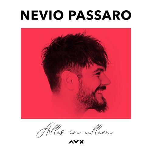 Alles in allem (Richastic RMX) by Nevio Passaro