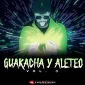 Guaracha y Aleteo (Vol. 3) by Zapateo Music