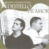 Destello de Amor de Various Artists
