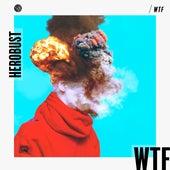 Wtf by heRobust