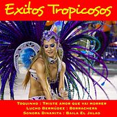 Exitos Tropicosos von Various Artists