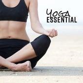 Yoga Essential by Yoga Music