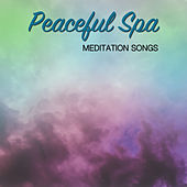 12 Peaceful Spa and Meditation Songs by S.P.A