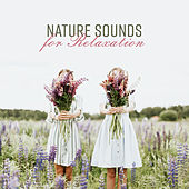 Nature Sounds for Relaxation by Nature Sounds (1)