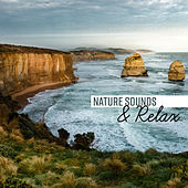 Nature Sounds & Relax de Nature Sounds Artists