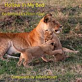 Hollow in My Bed by Peter Allan