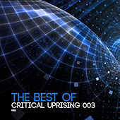The Best Of Critical Uprising 003 - EP by Various Artists